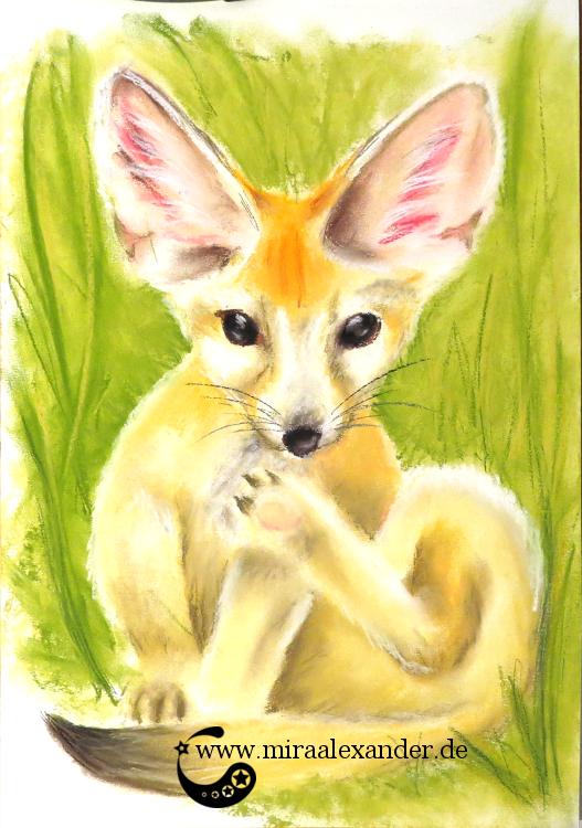 Pastellzeichnung eines Fenneks von Mira Alexander.