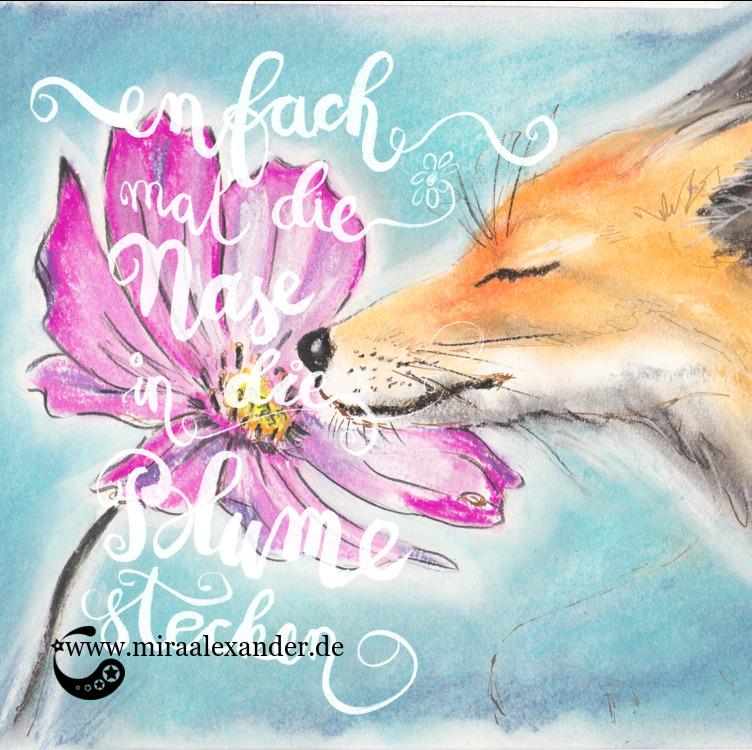 Einfach mal die Nase in die Blume stecken wie der Fuchs, von Mira Alexander. Pastellkreide.