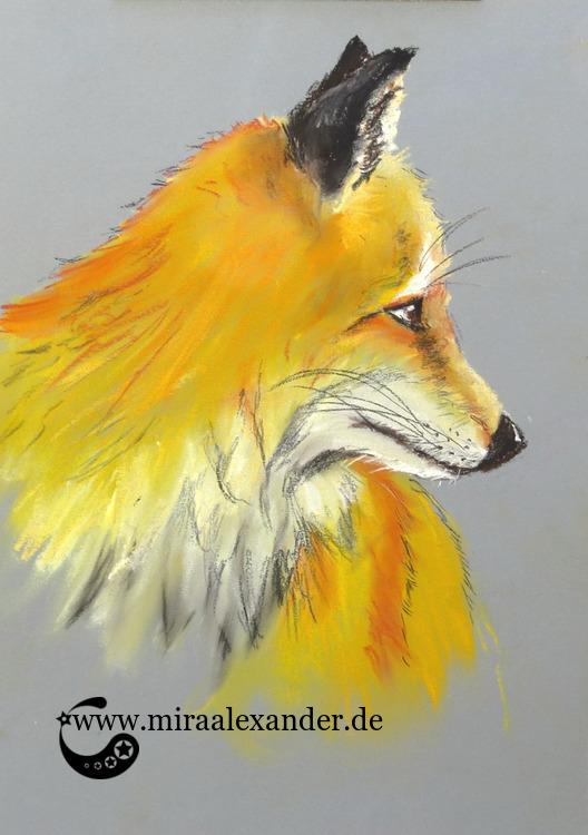 Ein Fuchs ist auch nur ein Hund, von Mira Alexander. Pastellzeichnung eines Fuchskopfes.