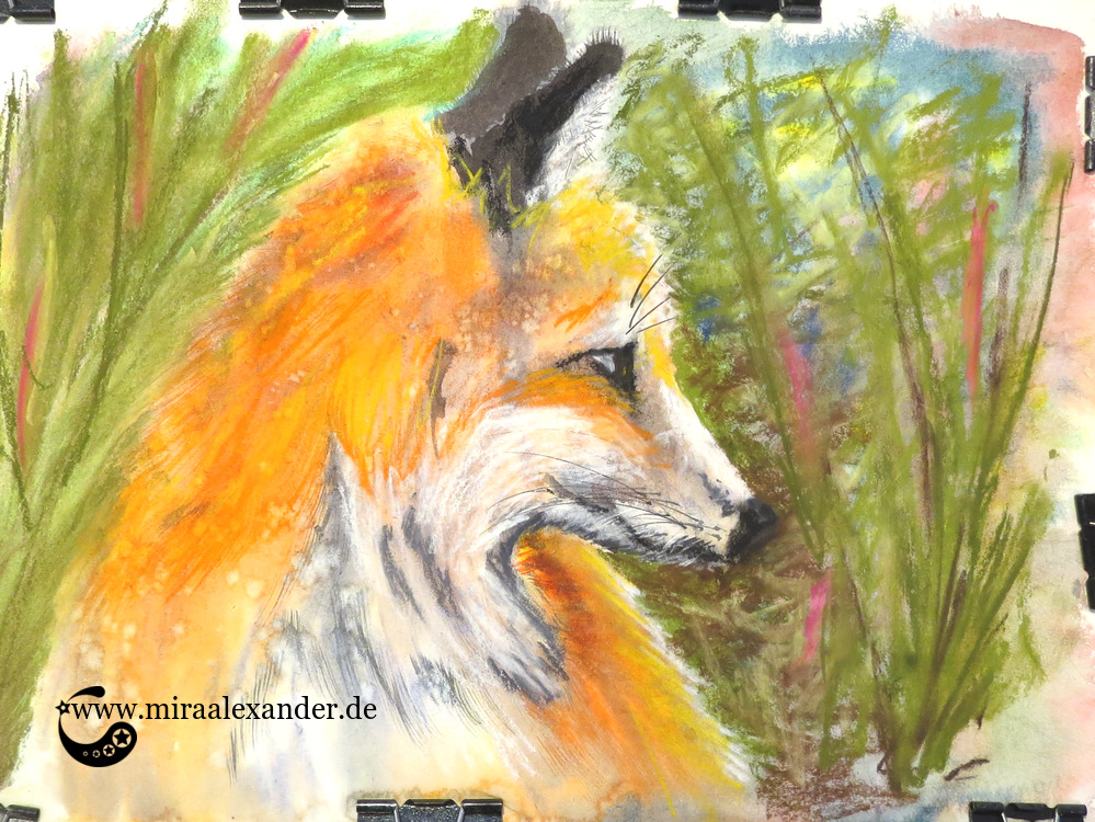 Ein Bild - viele Namen, von Mira Alexander. Mixed Media, Pastell, Aquarell. Abbildung eines Fuchskopfes.